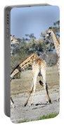 Necking Giraffes Botswana Portable Battery Charger
