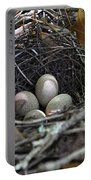 Nest Eggs Portable Battery Charger