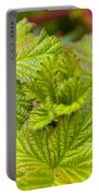 New Black Berry Leaves Portable Battery Charger
