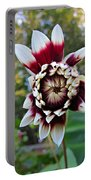 New Dahlia Portable Battery Charger