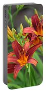 New Daylilies Portable Battery Charger