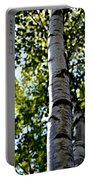 New England Birch Portable Battery Charger