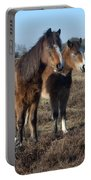 New Forest Ponies Portable Battery Charger