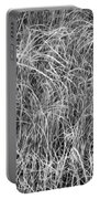New Grasses Glacier National Park Bw Portable Battery Charger