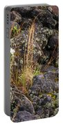 New Growth In A Desolate Area Portable Battery Charger