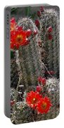 New Mexico Cactus Portable Battery Charger