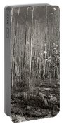 New Mexico Series - Bare Autumn Bw Portable Battery Charger