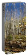 New Mexico Series -  Bare Autumn Portable Battery Charger