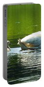 New Mute Swan Family In May Portable Battery Charger