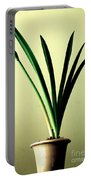 Fanned Leaves Of An Amaryllis Portable Battery Charger