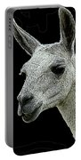 New Photographic Art Print For Sale   Portrait Of  Llama Against Black Portable Battery Charger