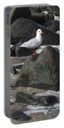 New Quay Gull 3 Portable Battery Charger