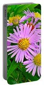 New York Asters In Flower's Cove-newfoundland Portable Battery Charger