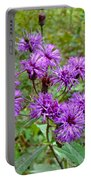New York Ironweed Wildflower - Vernonia Noveboracensis Portable Battery Charger