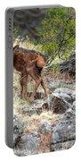 Newborn Elk Calf Portable Battery Charger