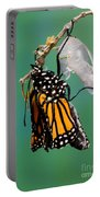 Newly-emerged Monarch Butterfly Portable Battery Charger