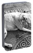 Newsworthy Dog In French Quarter Black And White Portable Battery Charger