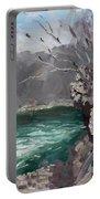 Niagara Falls Gorge Portable Battery Charger