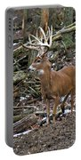 Nice Buck Portable Battery Charger
