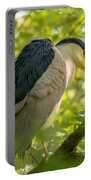 Night Heron At Rest Portable Battery Charger