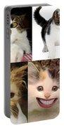 Nine Lives And Mood Swings Portable Battery Charger