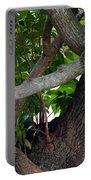 Nispero Tree Portable Battery Charger