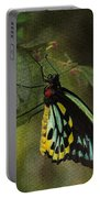 Northern Butterfly Portable Battery Charger