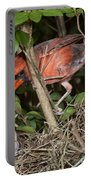 Northern Cardinal At Nest Portable Battery Charger