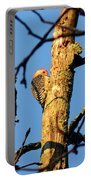 Northern Flicker At Sunrise Portable Battery Charger
