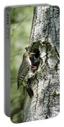 Northern Flicker Nest Portable Battery Charger