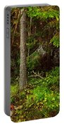 Northern Forest 1 Portable Battery Charger