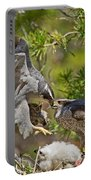 Northern Goshawk Brings Prey To Nest Portable Battery Charger