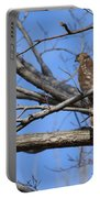 Northern Harrier  Portable Battery Charger