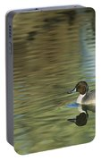 Northern Pintail In A Quiet Pond California Wildlife Portable Battery Charger