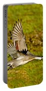 Northern Pintail In Flight Portable Battery Charger