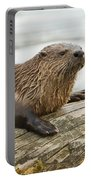Northern River Otter Portable Battery Charger