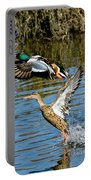 Northern Shoveler Pair Portable Battery Charger