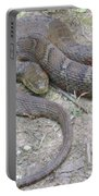 Northern Water Snake Portable Battery Charger