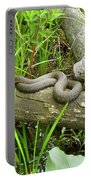 Northern Water Snake - Nerodia Sipedon Portable Battery Charger