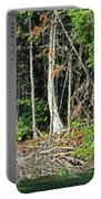 Northern Woods Portable Battery Charger