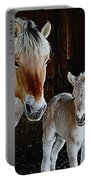 Norwegian Fjord Horse And Colt Digital Art Portable Battery Charger