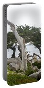 Not The Ghost Tree Portable Battery Charger