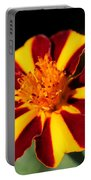Novelty French Marigold Named Mr. Majestic Portable Battery Charger