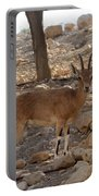 Nubian Ibex Portable Battery Charger