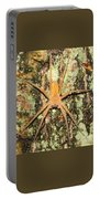Nursery Web Spider Portable Battery Charger