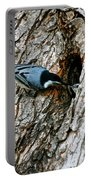 Nuthatch Love Portable Battery Charger