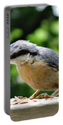 Nuthatch Portable Battery Charger