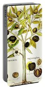 Nutmeg Plant Botanical Portable Battery Charger