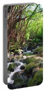 Banyan Nuuanu Stream Portable Battery Charger
