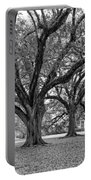 Oak Alley Grounds Bw Portable Battery Charger